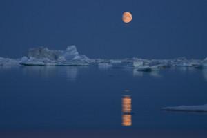 05.Noche Polar